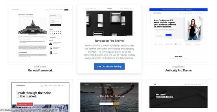 Das perfekte WordPress Theme 2019 - meine absoluten Favoriten 2