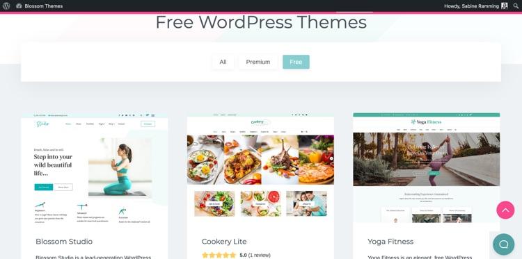 10 + Feminine Wordpress Themes für Unternehmerinnen 11